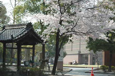 渡し場の跡の森前公園南側にはかわら美術館があります。